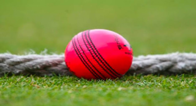 Which of the following is a slang term for the ball used in a cricket match?