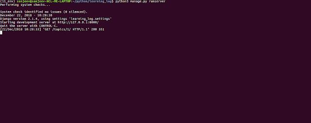 python django server