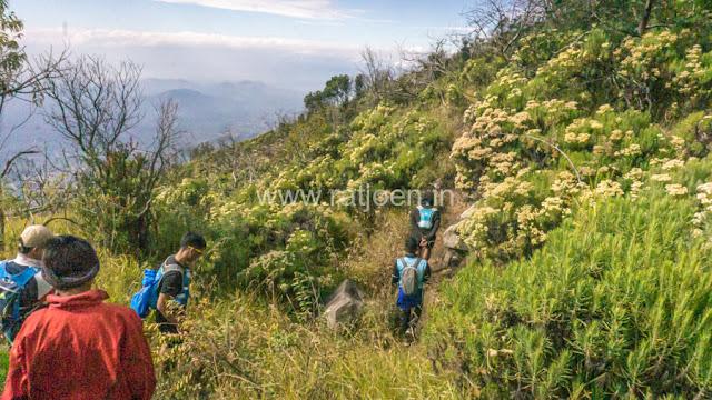 MT Lawu Melalui Jalur Klasik Singolangu Trail Run
