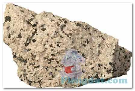 Gambar batuan Syenit