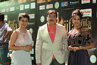 Celebrities in Sizzling Fashion at IIFA Utsavam Awards 2017 Day 1 27th March 2017 Exclusive  HD Pics 37.JPG
