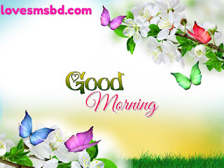 Good Morning Images, Stock Photos & Vectors
