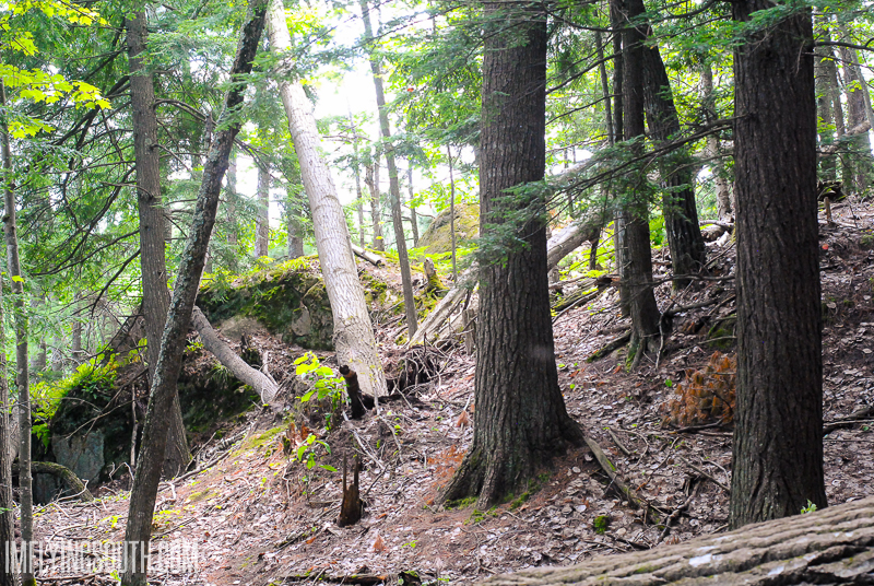 Hiking Hogsback Mountain - Marquette Michigan