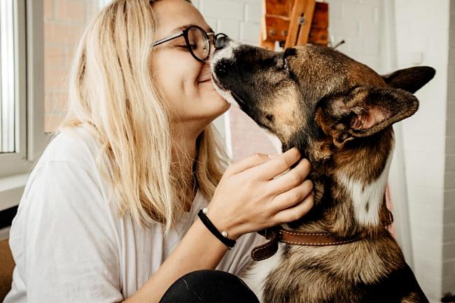 Jak pies okazuje miłość?