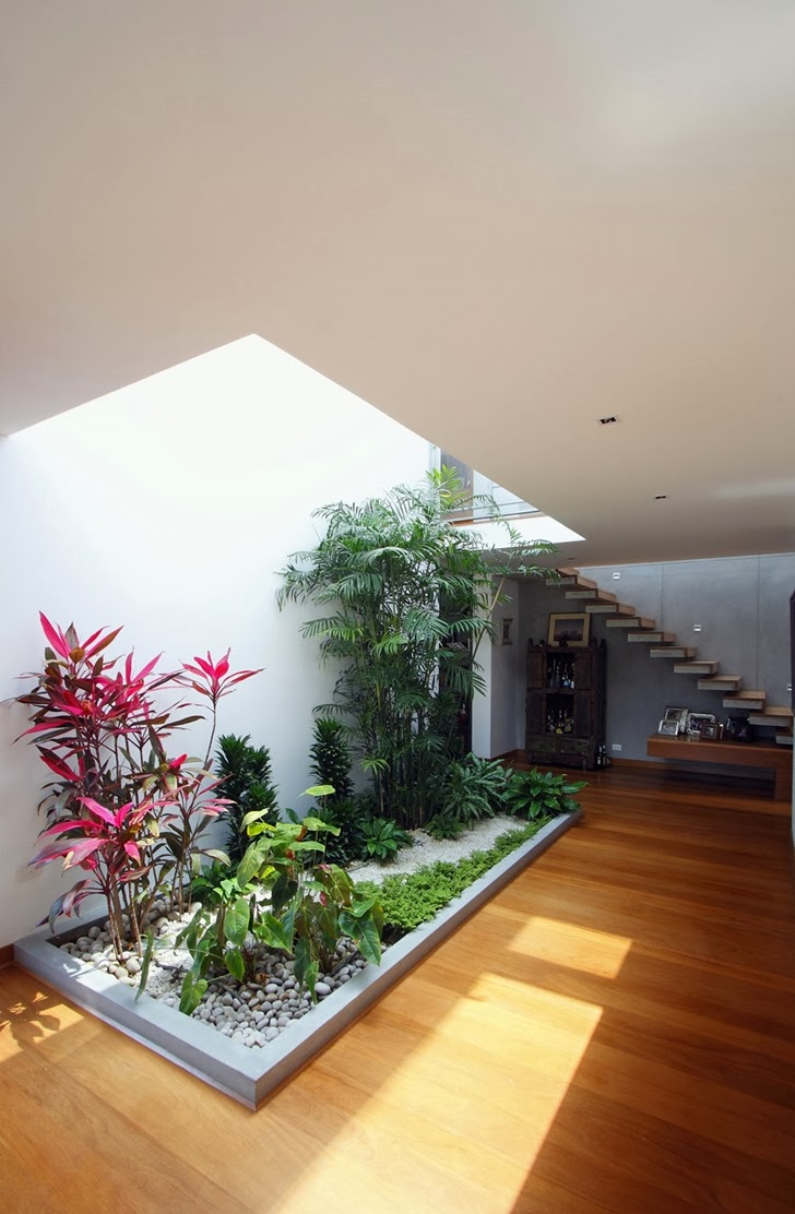 Interior garden in Cachalotes House by Oscar Gonzalez Moix