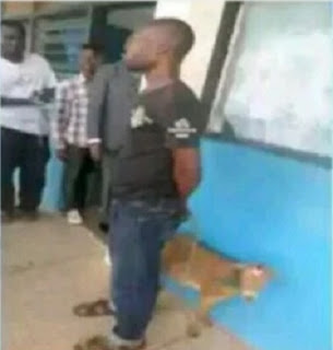 Shocking Bizarre: Goat Owner Accuses Boy Of Impregnating His Goat