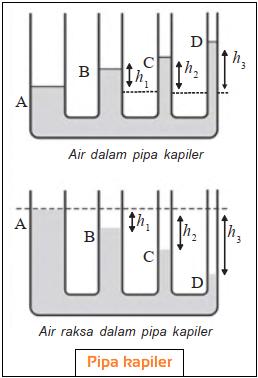 Bejana Berhubungan dengan Pipa Kapiler