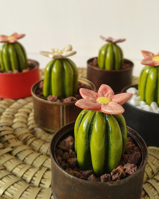 cactus decorativos de ceramica
