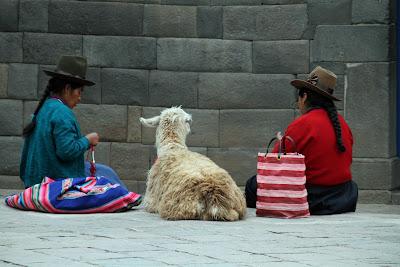 En Cusco, Perú, se suele ofrecer a los turistas hacerse fotos con llamas.