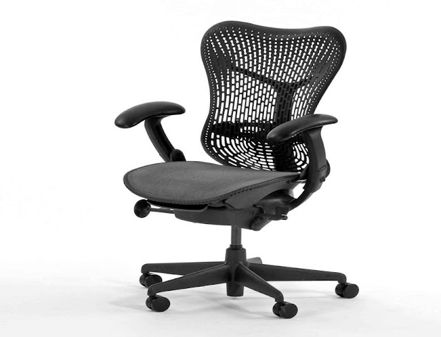 best buy ergonomic office chair with adjustable lumbar support for sale