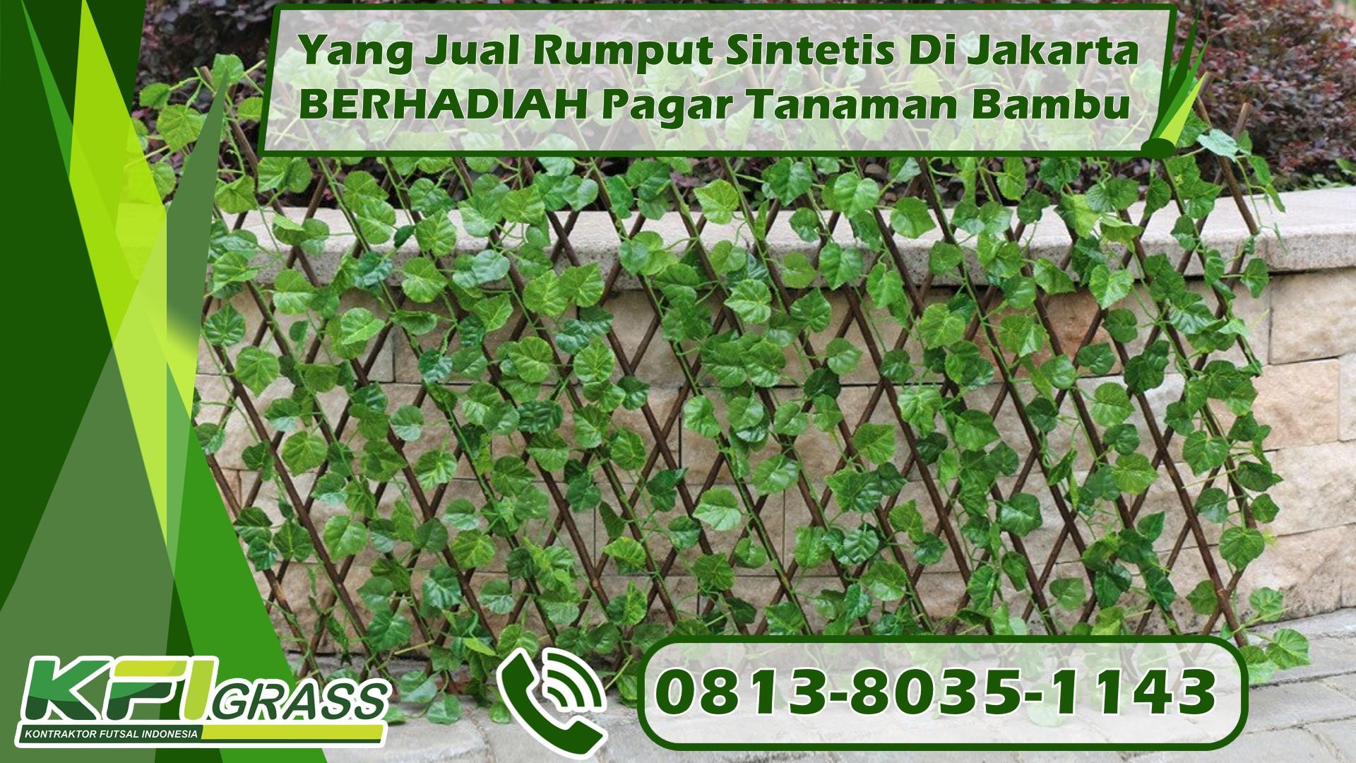 Yang Jual Rumput Sintetis Di Jakarta