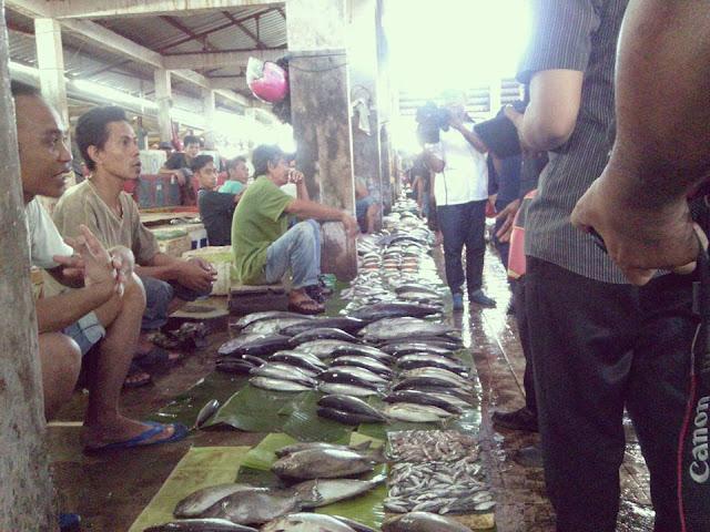 Ikan Cakalang dan Lajang dari Luar Ditemukan Positif Berformalin di Palopo