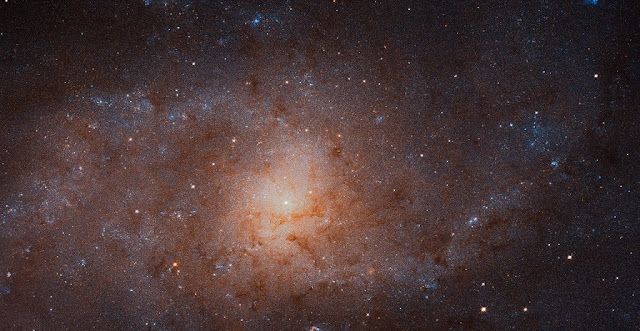 This gigantic image of the Triangulum Galaxy — also known as Messier 33 — is a composite of about 54 different pointings with Hubble's Advanced Camera for Surveys. With a staggering size of 34 372 times 19 345 pixels, it is the second-largest image ever released by Hubble. It is only dwarfed by the image of the Andromeda Galaxy, released in 2015.  The mosaic of the Triangulum Galaxy showcases the central region of the galaxy and its inner spiral arms. Millions of stars, hundreds of star clusters and bright nebulae are visible. This image is too large to be easily displayed at full resolution and is best appreciated using the zoom tool.  Credit: NASA, ESA, and M. Durbin, J. Dalcanton, and B. F. Williams (University of Washington)