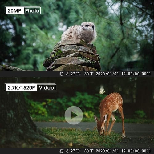 Coolife 2.7K 20MP Trail Game Hunting Camera