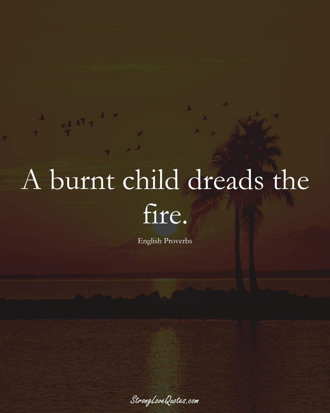 A burnt child dreads the fire. (English Sayings);  #EuropeanSayings