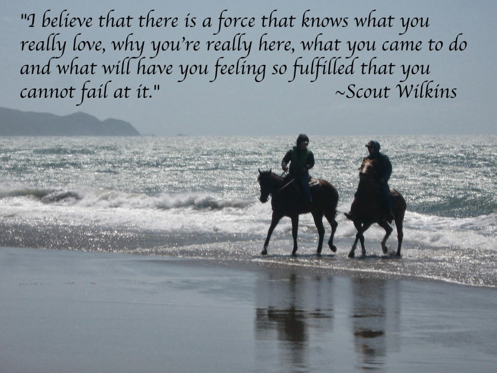 Quotes About High Horse. QuotesGram