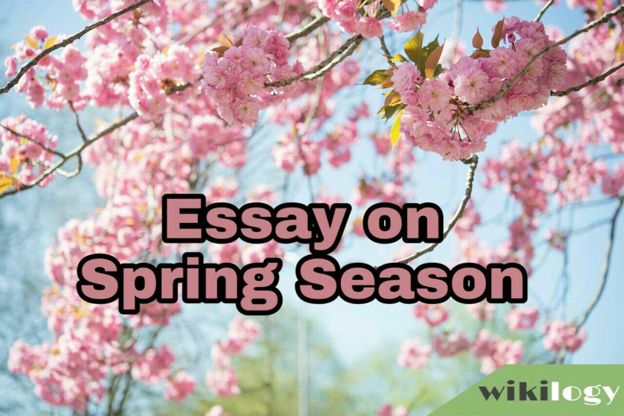 Spring Season Essay and Composition/ The Season I Like Most