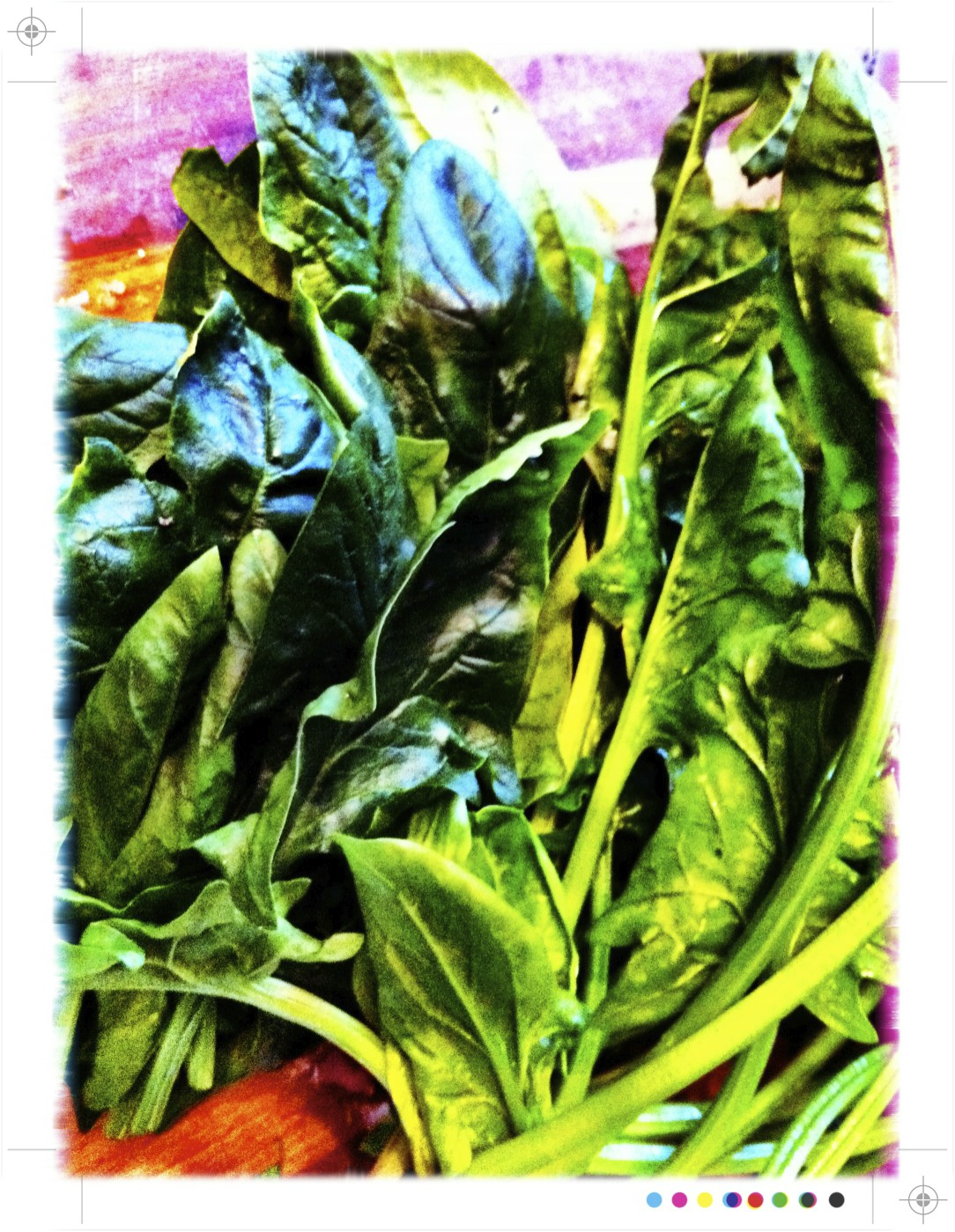 Spinach Strata Natural Foods Every Day