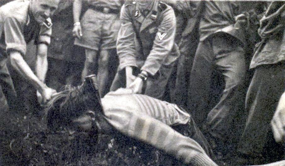 massacre, exécution... Nazi%2Bgerman%2Bwar%2Bcrime%2Bbeheading%2Byugoslavia%2Bpartisan%2Bss%2Baxe%2Bexecution