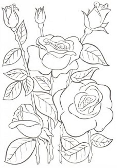 Dibujos De Flores Para Bordar Manteles Pin By Adelayda