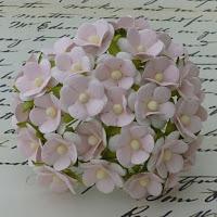 https://scrapshop.com.pl/pl/p/Kwiatki-Sweetheart-Baby-Pink-15mm%2C-10szt.-SAA-195/5317