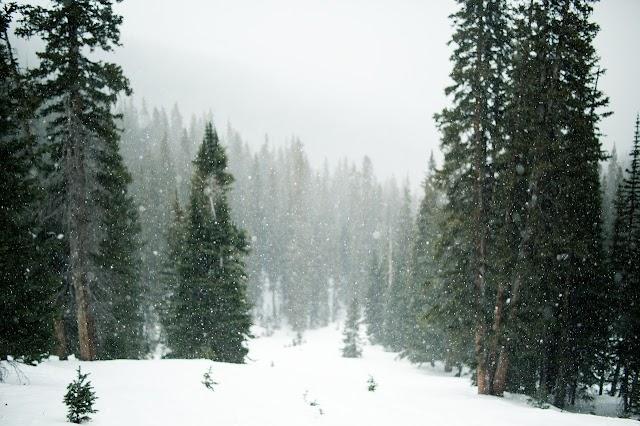 Winter season Essay for students and children. Best Essay on Winter season
