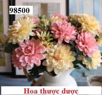Phu kien hoa pha le tai Phuc Dong