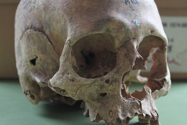 Radiocarbon dating reveals mass grave did date to the Viking age