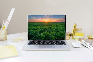 Photograph of a Cramer Imaging landscape photo on a laptop computer screen for commercial use