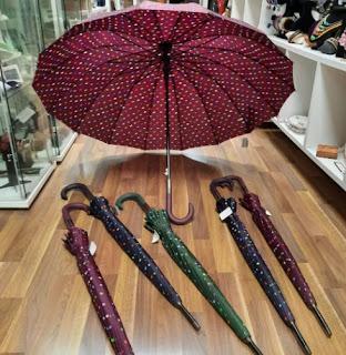 Paraguas. La moda del Paragüero.