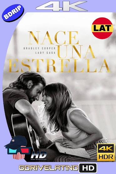 Nace Una Estrella (2018) BDRip 4K HDR Latino-Ingles MKV