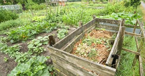 Sheet Composting/Lasagna Gardening