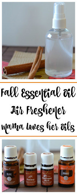 The perfect fall and winter air freshener spray that's infused with essential oils! Fall Essential Oil Air Freshener Spray Recipe from Hot Eats and Cool Reads