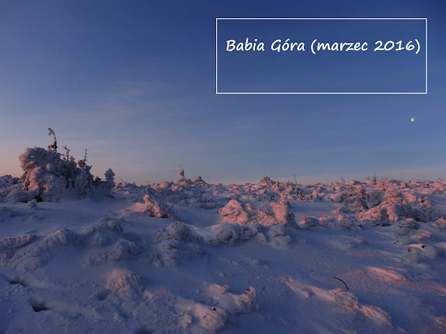 Babia Góra z przełęczy Krowiarki zimą (wschód słońca)