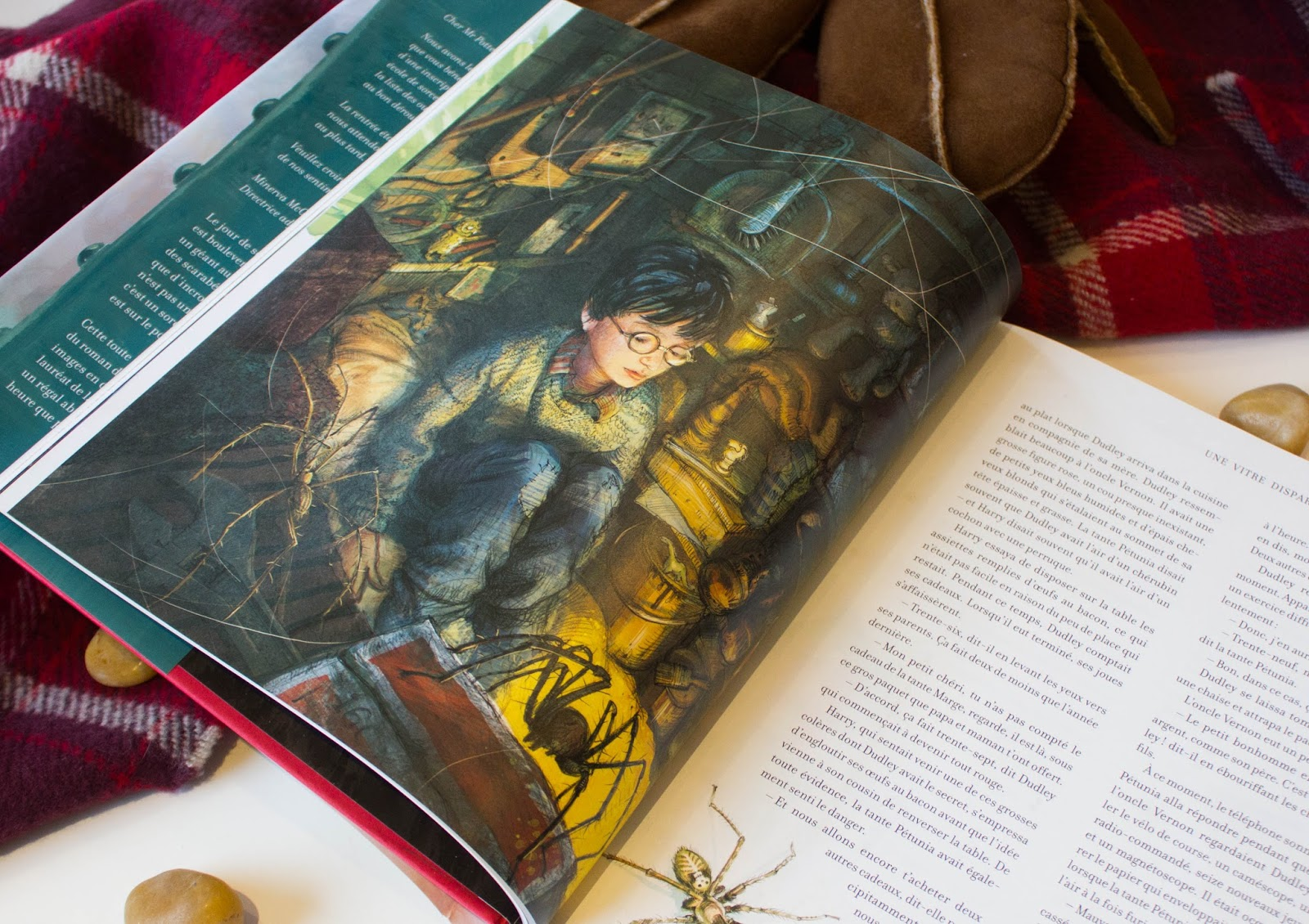 Harry Potter Illustre Par Jim Kay La Bibliotheque De Coeur