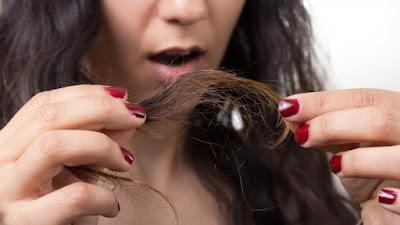 [Beauty Tips] for hair remedies to treat hair split ends - बालों के दोमुंहेपन को दूर करें