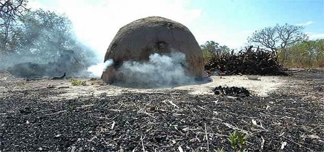 """Barreiras: MPF denuncia mais de 70 pessoas envolvidas na """"máfia do carvão"""""""
