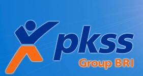 PKSS Bengkulu
