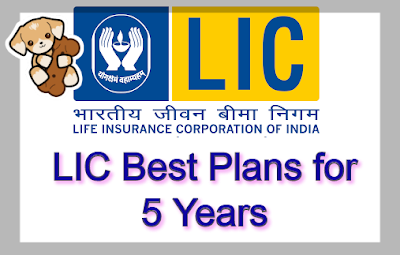 Best LIC Policy for 5 Years