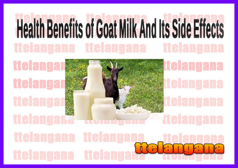 Health Benefits of Goat Milk And Its Side Effects