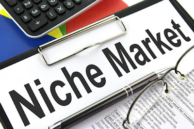 What is Niche ? Earn 500$ every Month by Niche Website
