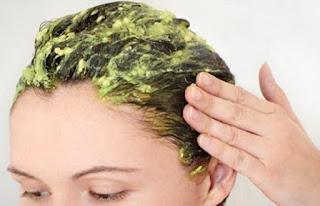 rambut rontok berlebihan pertanda apa,  ciri ciri rambut rontok karena penyakit,  penyebab rambut rontok pada wanita berjilbab,  penyebab rambut rontok pada pria,  penyebab rambut rontok pada pria di usia muda,  cara mengatasi rambut rontok berlebihan,  vitamin untuk rambut rontok,  penyebab rambut rontok pada remaja