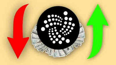 What does the future hold for IOTA?