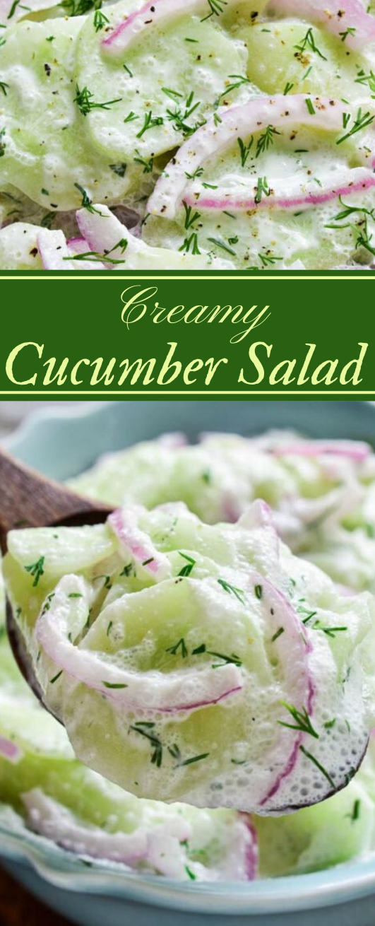 CREAMY CUCUMBER SALAD #salad #vegetarian #vegan #cucumber #easy