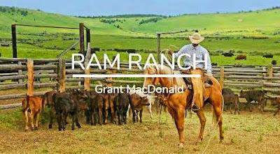 Ram Ranch Lyrics | Lyrics of Ram Ranch by Grant