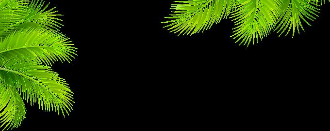 Leaf Pattern, Green leaf pattern, template, leaf png by: pngkh.com
