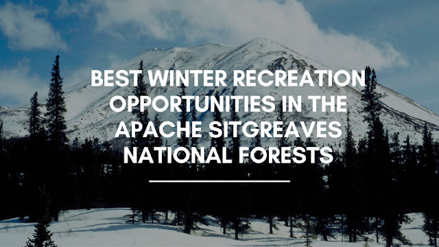 Best Winter Recreation Opportunities in the Apache Sitgreaves National Forests