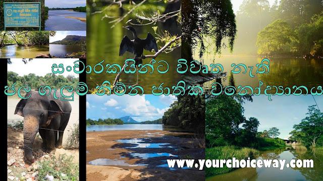 සංචාරකයින්ට විවෘත නැති - ජල ගැලුම් නිම්න ජාතික වනෝද්යානය🍃🐃🦌🐘 (Flood Plains National Park) - Your Choice Way