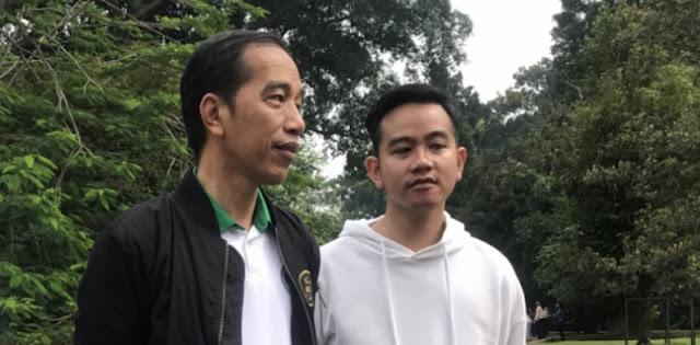 Jokowi Satu-satunya Magnet Politik, Berisiko Kalau Gibran Diusung Di Pilgub DKI 2024