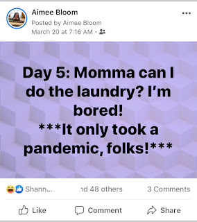 Facebook Post that reads Day 5: Momma can I do the laundry? I'm Bored- It only took a pandemic, folks!